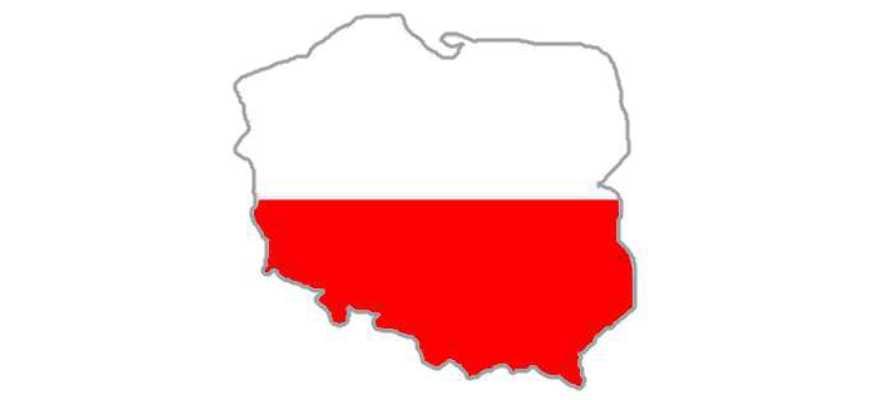 Стоимость перевода в паре русский польский